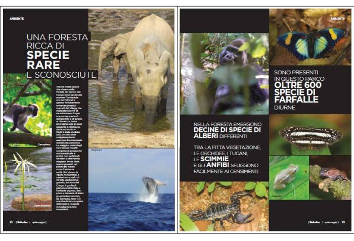 BioEcoGeo Gabon 2