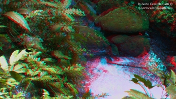 Acqua 3D