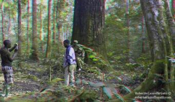 Ai piedi del gigante 3D