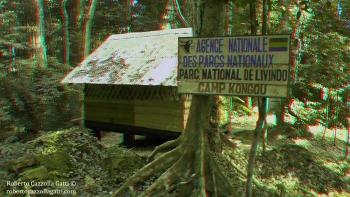 Camp Kongou 3D