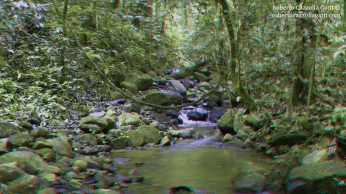 Fiume 3D