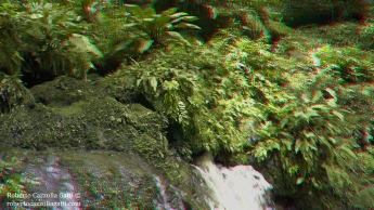 Freschezza 3D