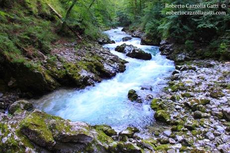 Paesaggio slovenia