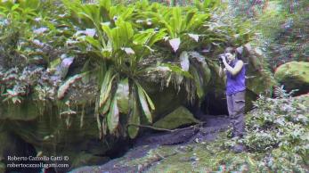 Villaggio dei Puffi 3D