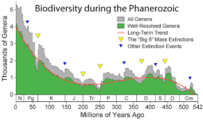biodiversity_phanerozoic