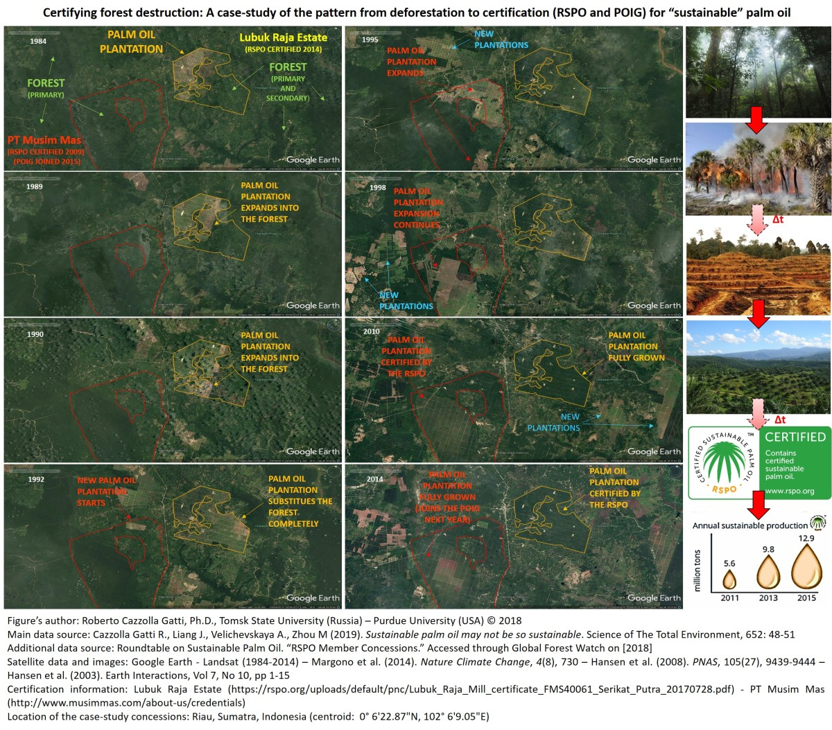 Sustainable palm oil: certifying forest destruction